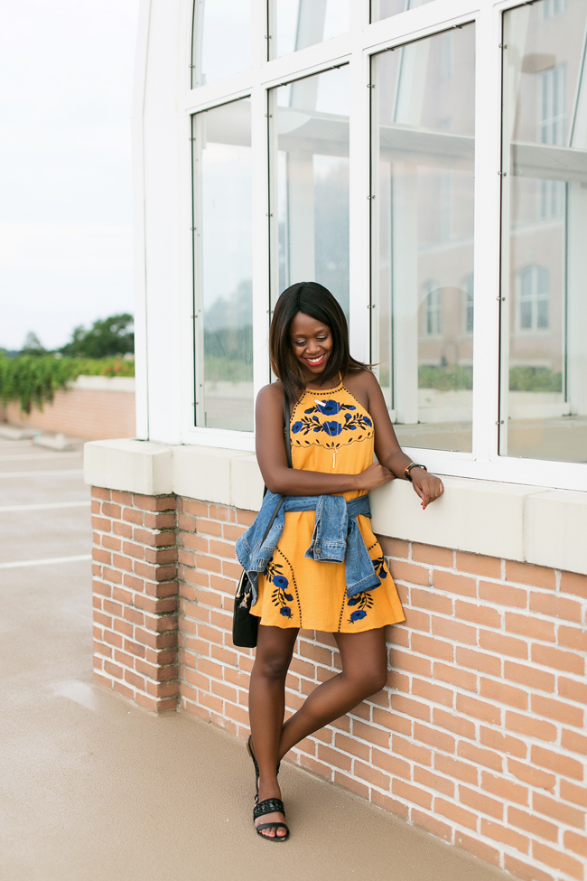 THML Bahama Baby Dress, What to Wear to a Picnic, DC Blogger