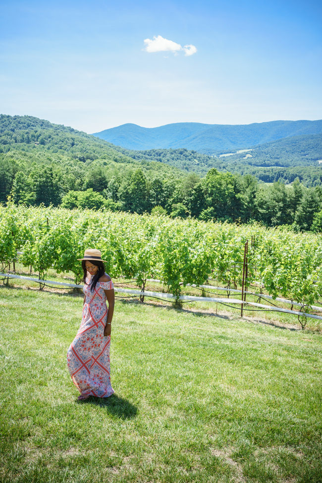 Charlottesville Area Vineyards