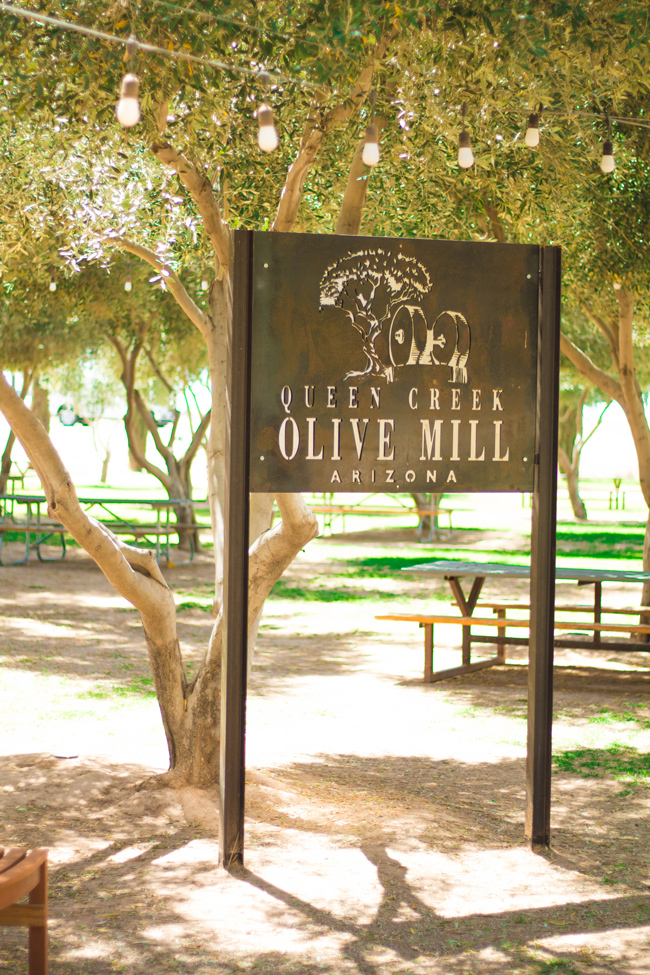 Queen Creek Olive Mill Tours