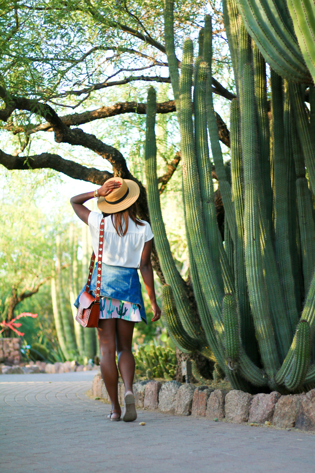 Travel Blogger Alicia Tenise visits the Desert Botanical Gardens in Phoenix