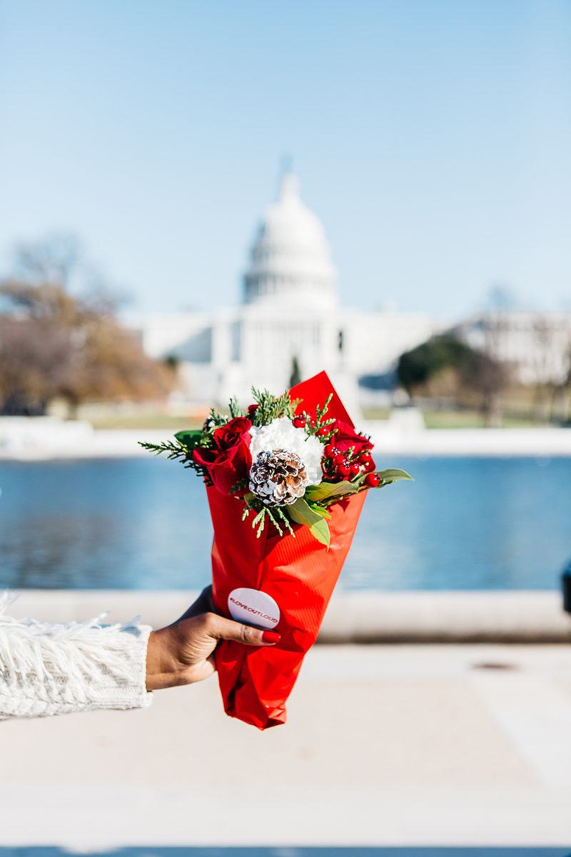 The National Mall Best Views - Spreading Cheer This Holiday Season by Washington DC blogger Alicia Tenise