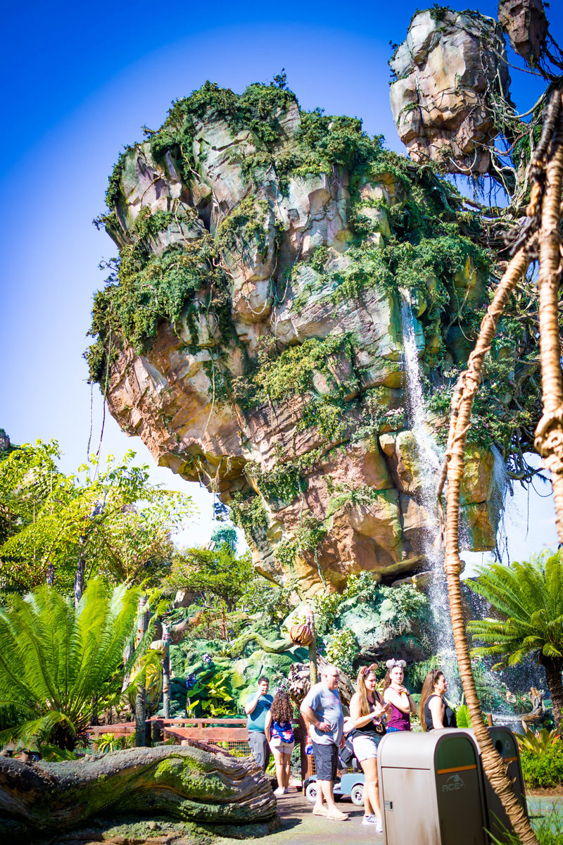 Pandora at Disney's Animal Kingdom - Disney World For Adults by popular DC travel blogger Alicia Tenise