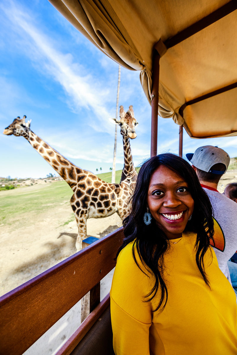 San Diego Safari Park - San Diego Travel Guide by popular travel blogger Alicia Tenise