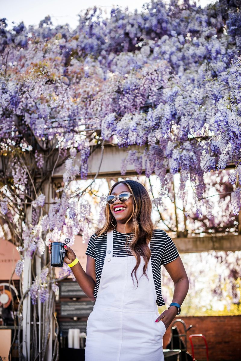 Williamsburg Wisteria, How to Wear a Overall Dress - True Life: I Botched My First Major Blog Advertising Campaign by popular DC Blogger, Alicia Tenise