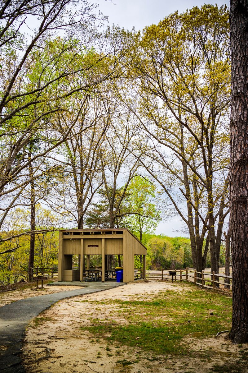 York River State Park - The Ultimate Williamsburg Travel Guide featured by popular DC travel blogger, Alicia Tenise