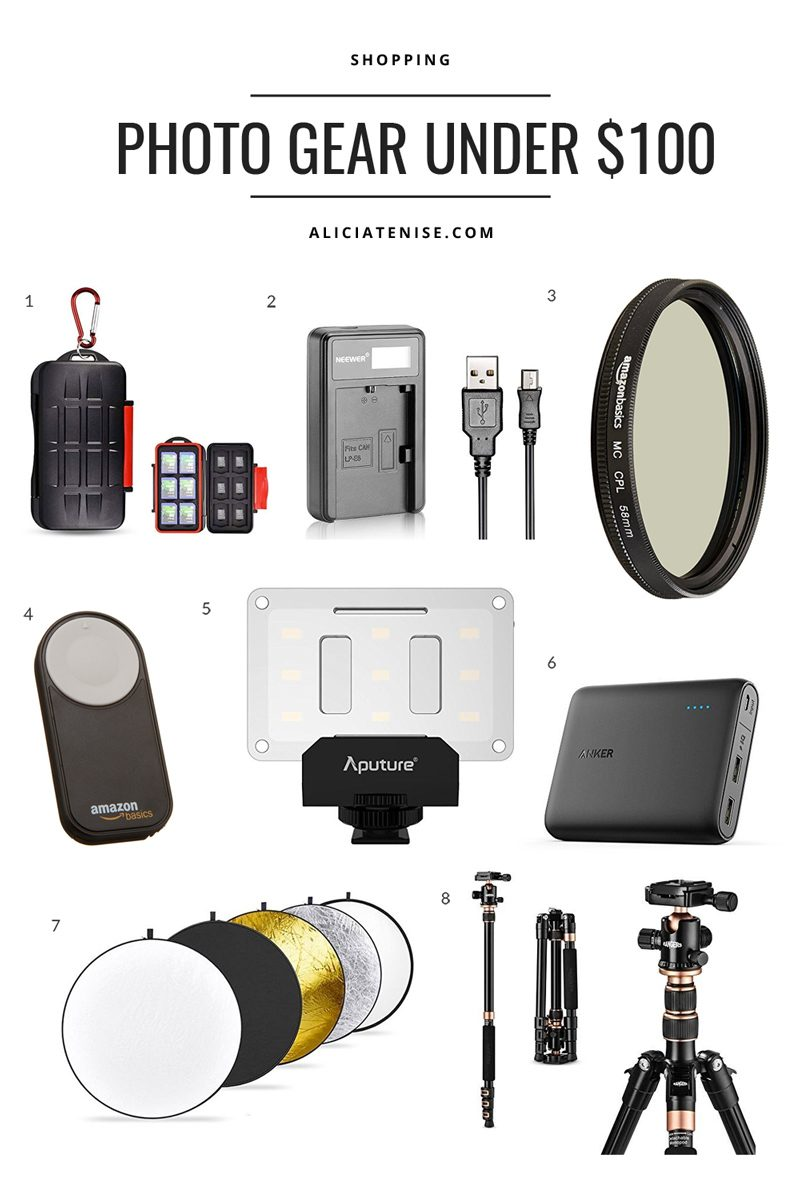 The Best Camera Gear Under $100 featured by popular Virginia blogger Alicia Tenise