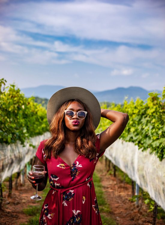 The Best Wineries in Virginia - 7 Wineries in Virginia You Need to Visit featured by popular Virginia travel blogger, Alicia Tenise