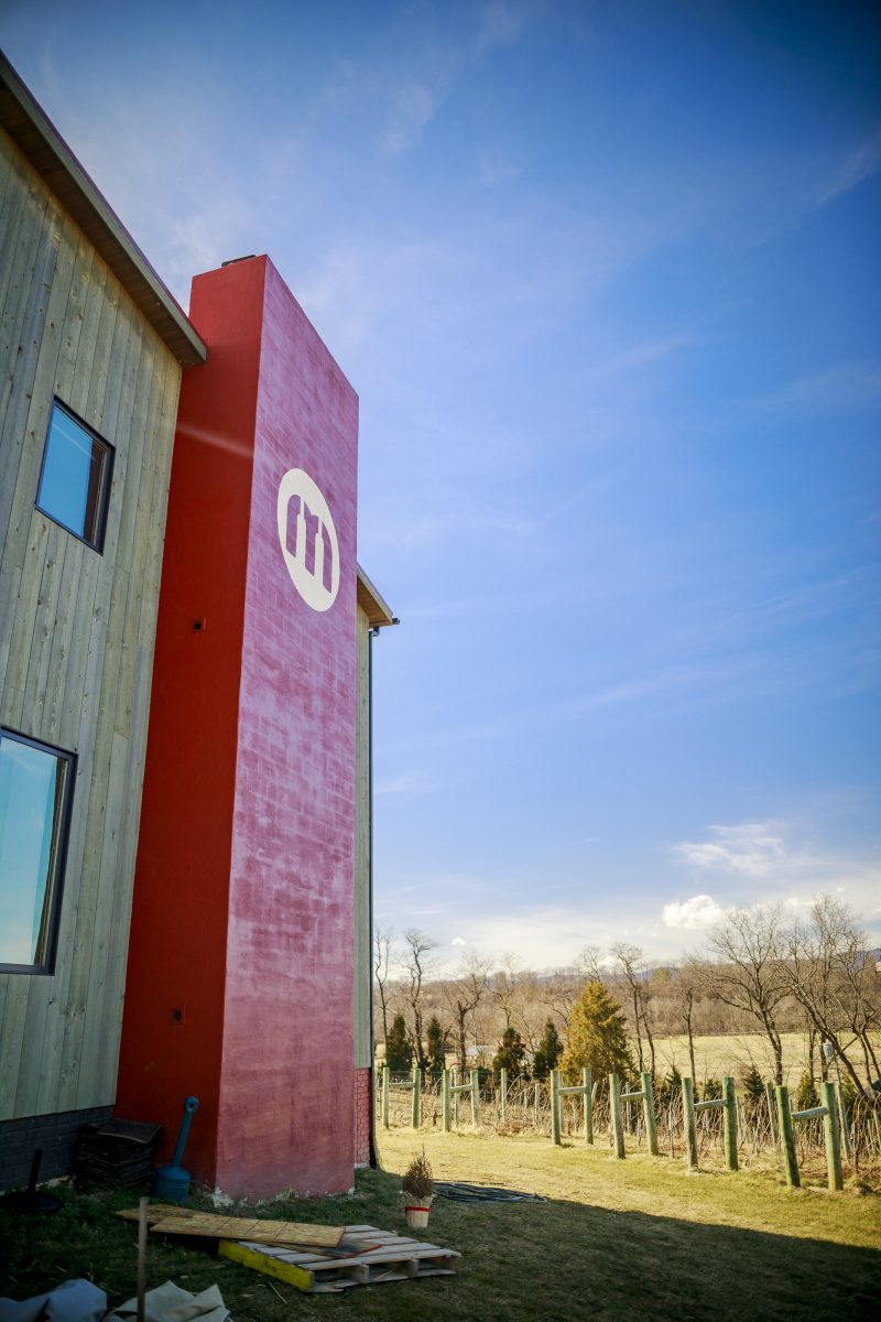Virginia Wineries by popular D.C. travel blogger, Alicia Tenise: image of Muse vineyards.