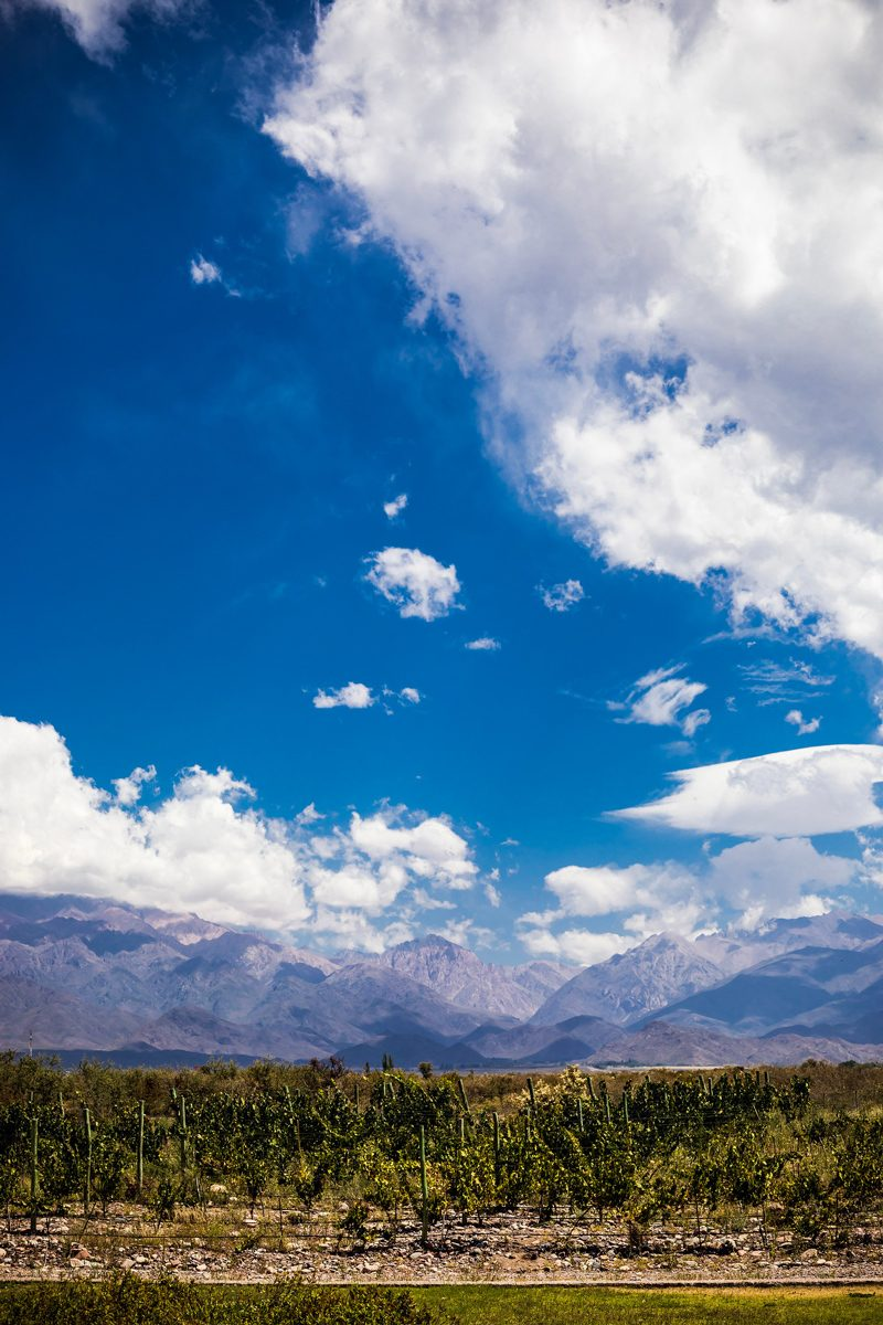 Mendoza Travel Guide featured by top US travel blogger Alicia Tenise