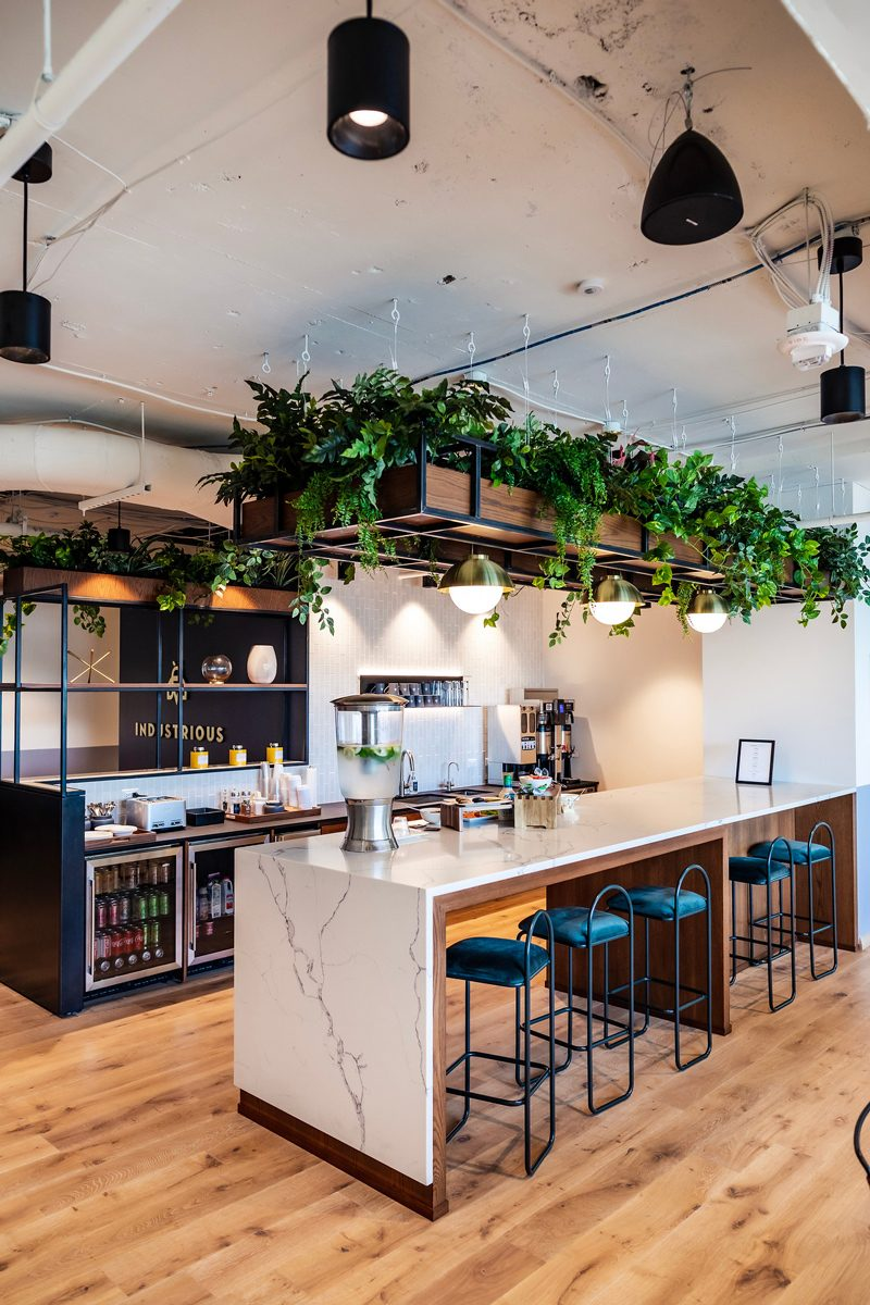 My Office Tour at Industrious Alexandria, VA by popular DC blogger, Alicia Tenise: image of a beverage bar with a marble counter, barstool seating, coffee machine, water dispenser, beverage fridges, and greenery hanging from the ceiling.