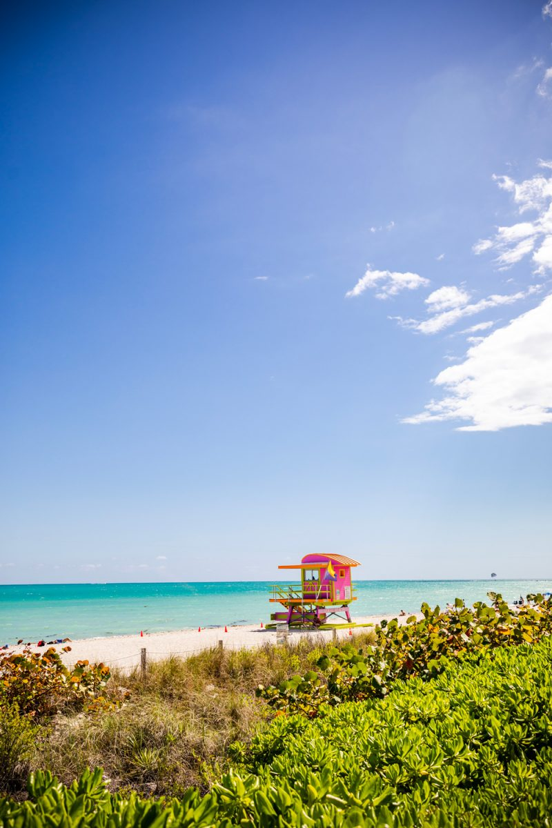Miami Beach | Things to do in Miami in the Spring: image of a pink lifeguard tower on Miami Beach.