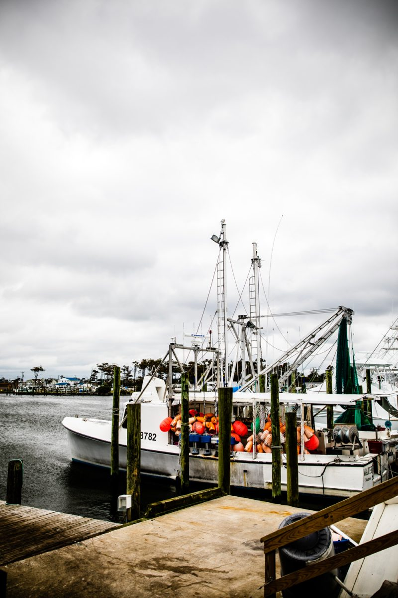OBX Crabbing and Shrimping Charters | Things to do in the Outer Banks by popular D.C. travel blogger, Alicia Tenise: image of a fishing boat.