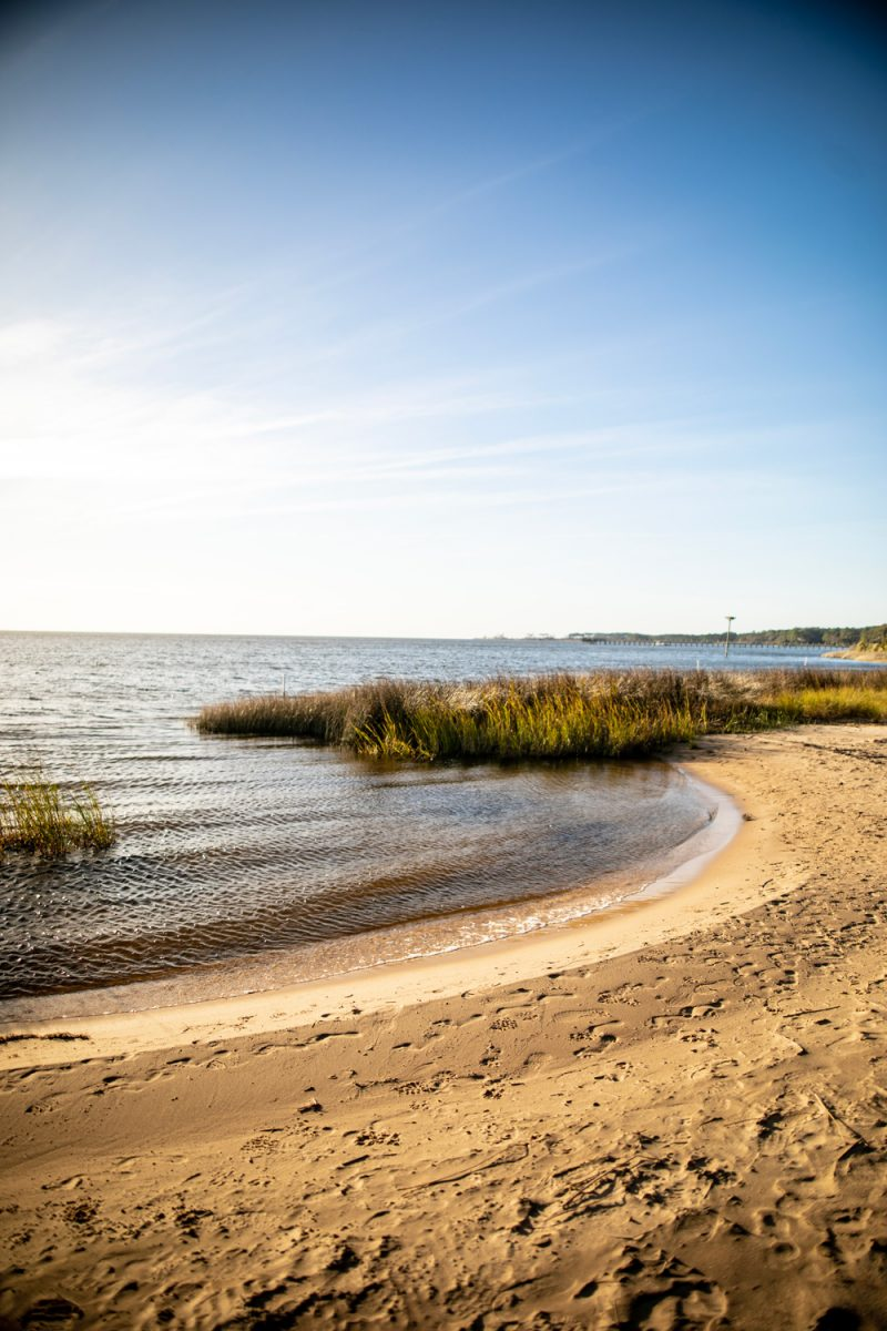 Jockey's Ridge State Park, Things to do in the Outer Banks | Things to do in the Outer Banks by popular D.C. travel blogger, Alicia Tenise: image of the Outer Banks.