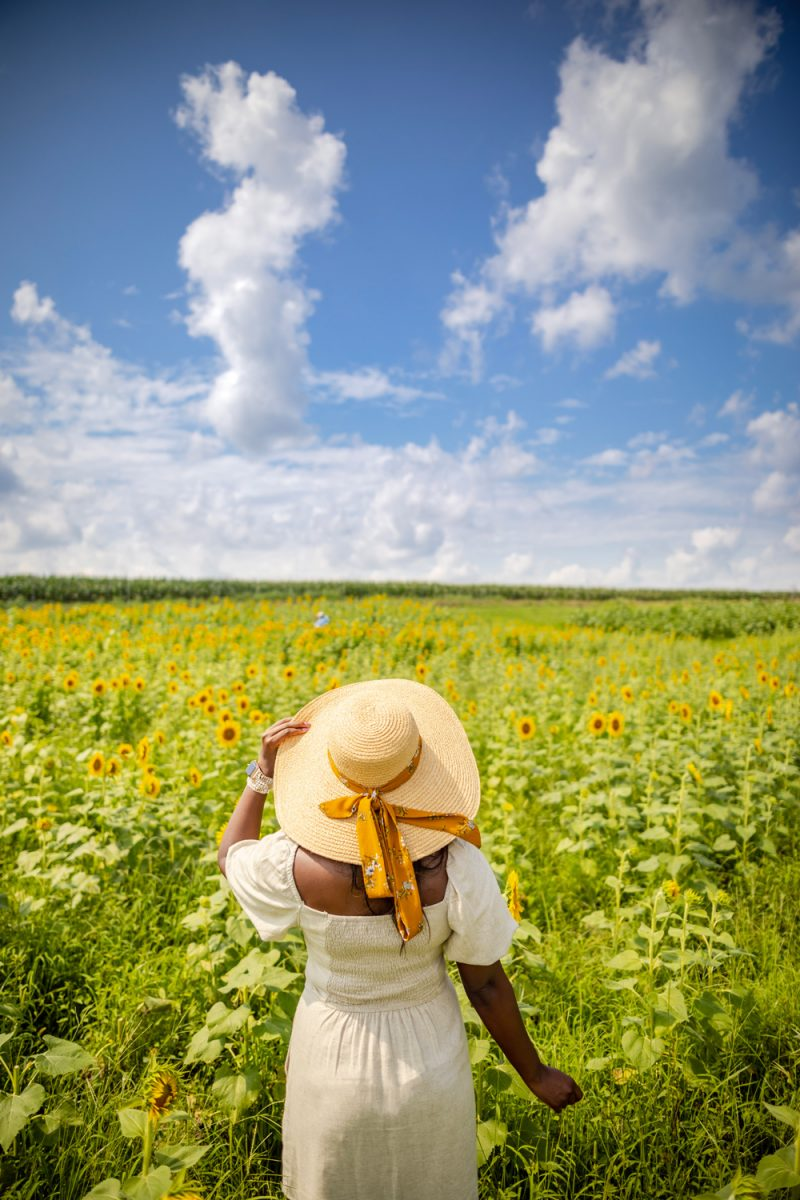 Hat Attach Coco Sunhat, Burnside Farms Virginia, Sunflower Fields Near D.C. | Being 30 by popular D.C. lifestyle blogger, Alicia Tenise: image of Alicia Tenise standing in a sunflower field and wearing a Hat Attack Coco Sunhat and Abercrombie and Fitch Puff-Sleeve Linen-Blend Mini Dress.