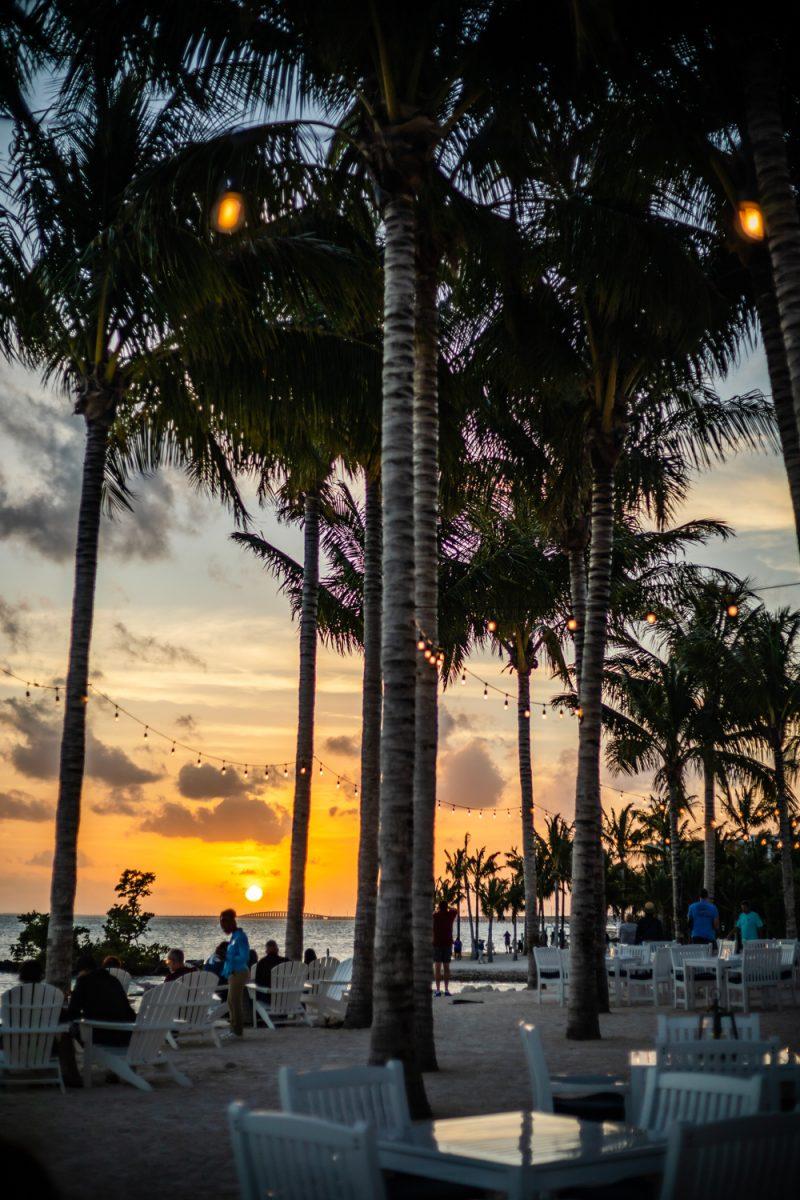 Isla Bella Beach Resort |Florida Keys Road Trip by popular D.C. travel blogger, Alicia Tenise: image of the Isla Bella Beach Resort.