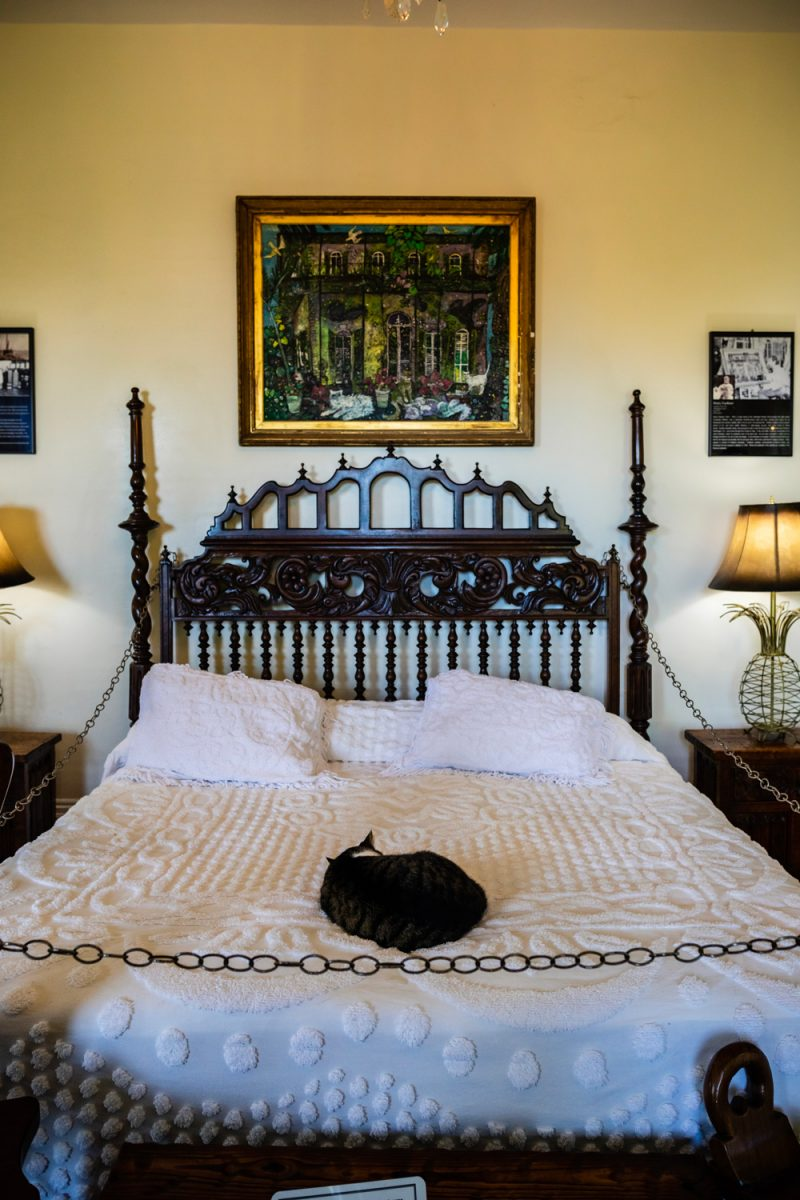 Hemingway House Key West |Florida Keys Road Trip by popular D.C. travel blogger, Alicia Tenise: image of a bed with a cat lying on it at the Hemingway House.