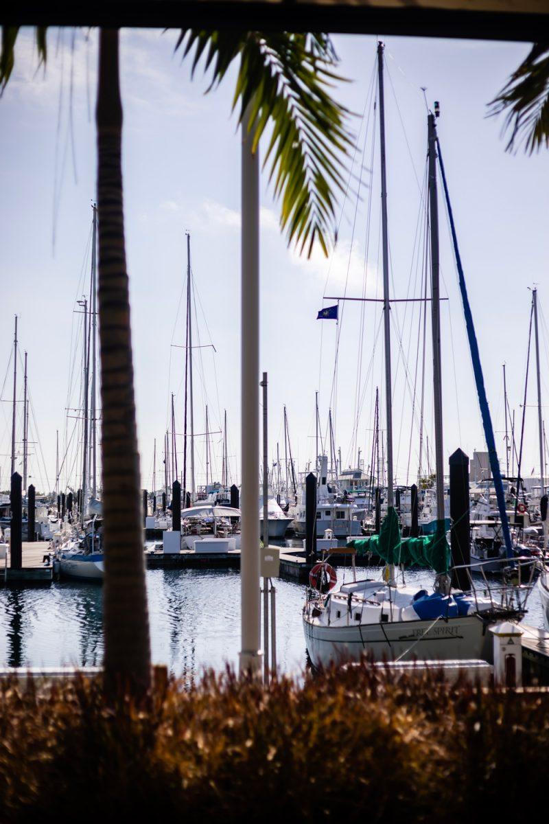 Stock Island Marina |Florida Keys Road Trip by popular D.C. travel blogger, Alicia Tenise: image of Stock Island Marina.